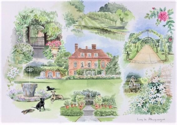 House , garden and dogs