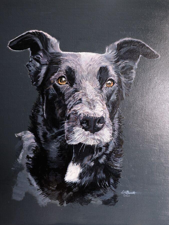 Dog Portrait Painting - Ty