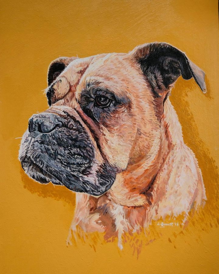 'Untitled' Dog Pet Portrait