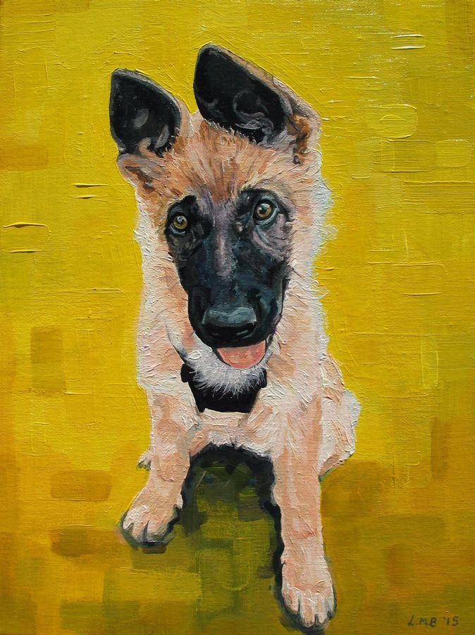 'Untitled' German Shepherd Dog Portrait