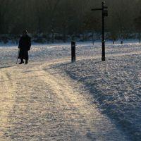 Snowy Walk II