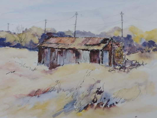 The Old Rustic Shed