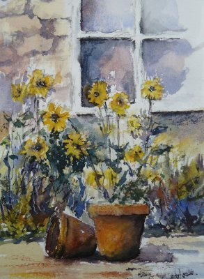 Patio Sunflowers