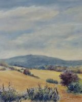 Summer View Moel Fammau.     SOLD
