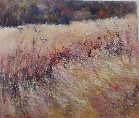 Summer Breeze meadow