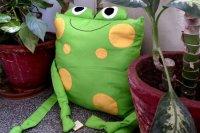 3517344 - Frog Cushion