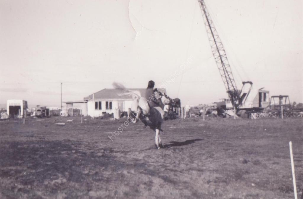 Wingfield SA 1973