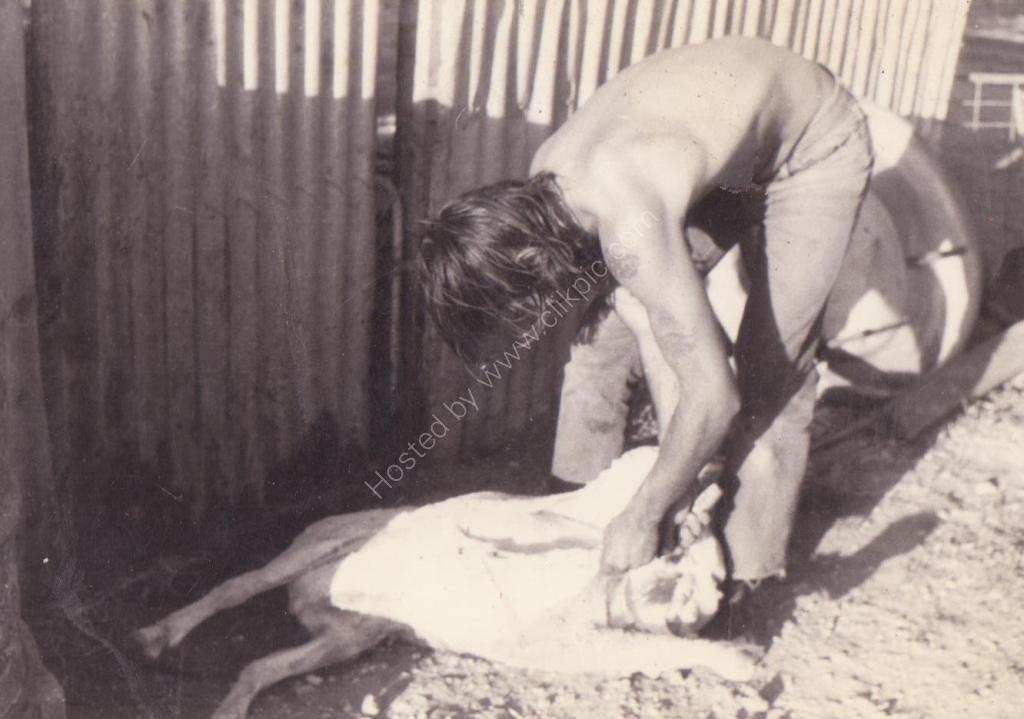 1976 April feed for my 21 birthday Crystal Brook SA
