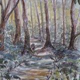 Shenley Wood, by Su Gibbon