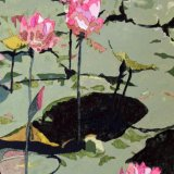 Lily Pond, by Jim Coggins