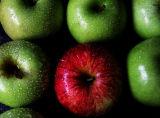 La Pomme de L'œil