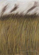 Reeds Looking Towards Iken