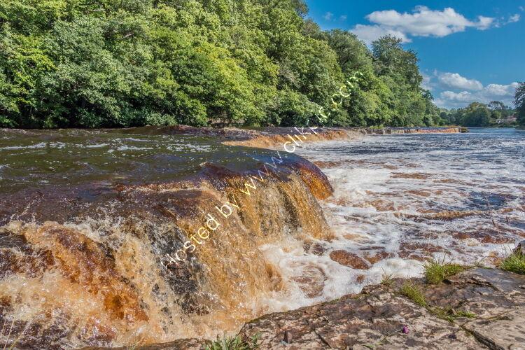A Swollen River Tees at Whorlton