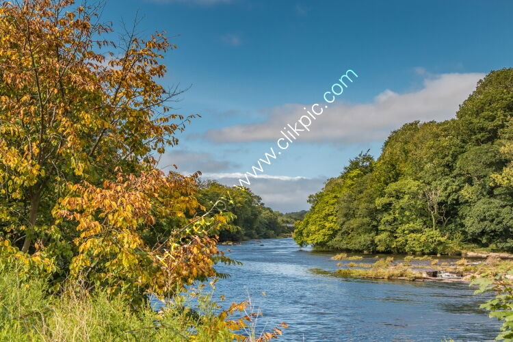 Early Autumn Hues at Wycliffe Sep 2020
