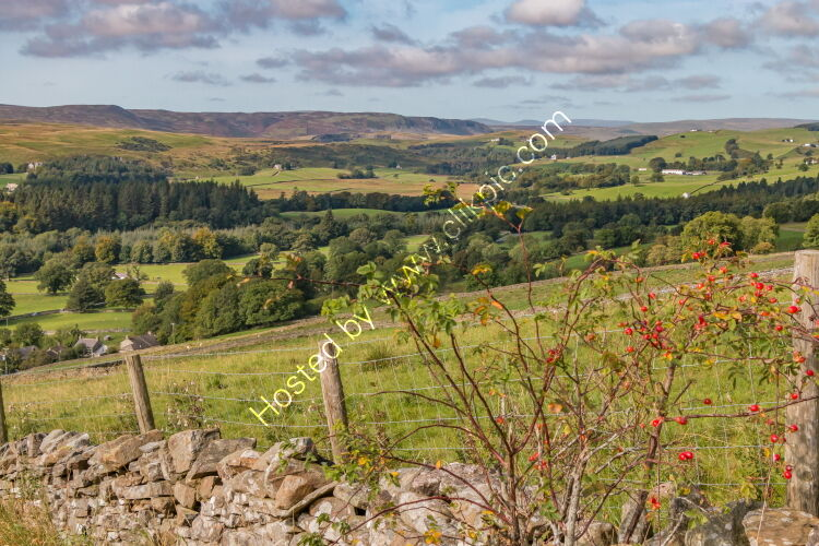 Upper Teesdale from Miry Lane, Newbiggin in Early Autumn