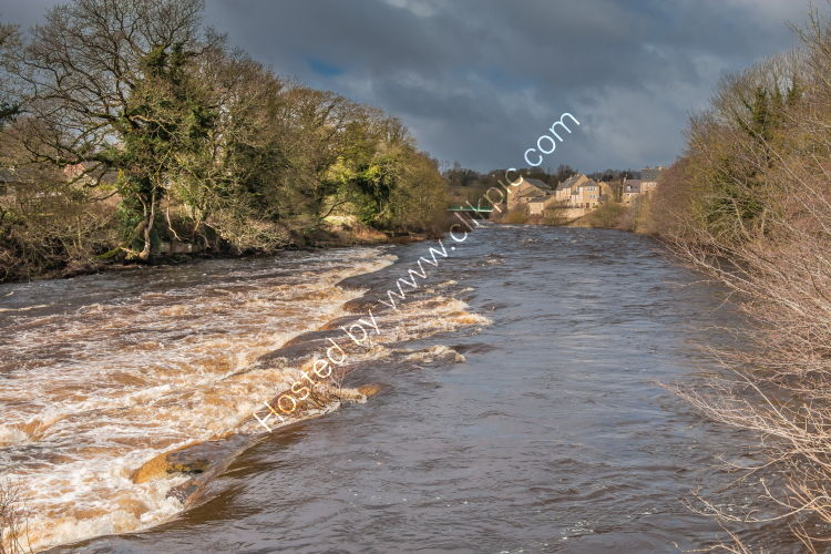A Swollen River Tees at Barnard Castle, Teesdale