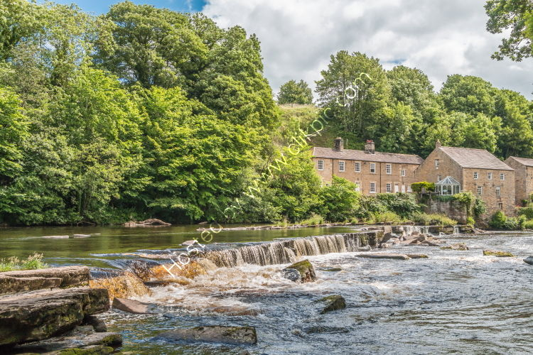 The River Tees and Demenses Mill, Barnard Castle in Summer