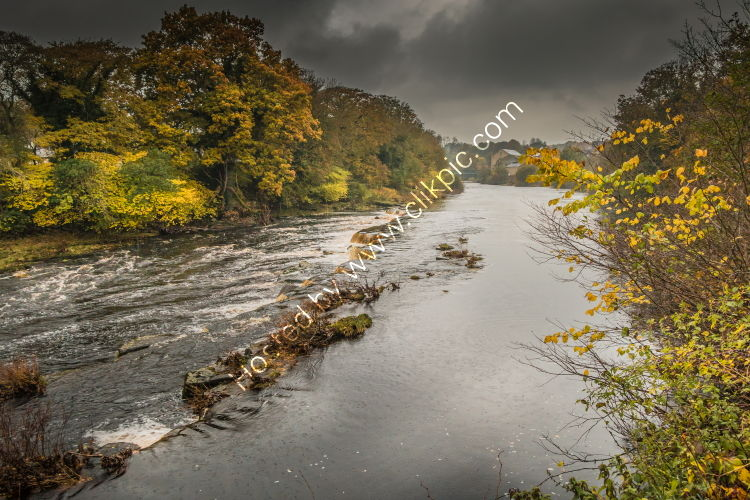 The River Tees upstream from Demenses Mill on a wet autumn morning