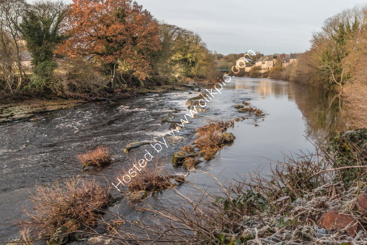 Frosty Morning on the River Tees at Barnard Castle
