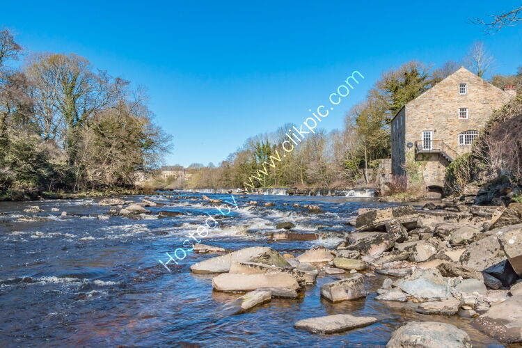 River Tees and Demenses Mill