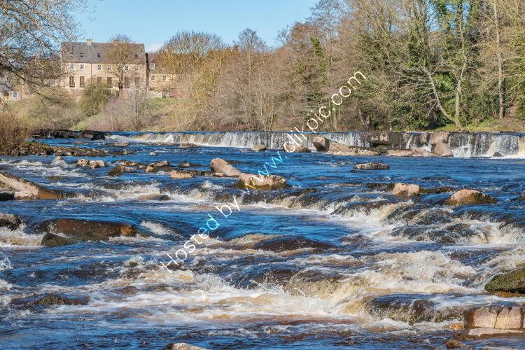 River Tees at Demesnes Mill