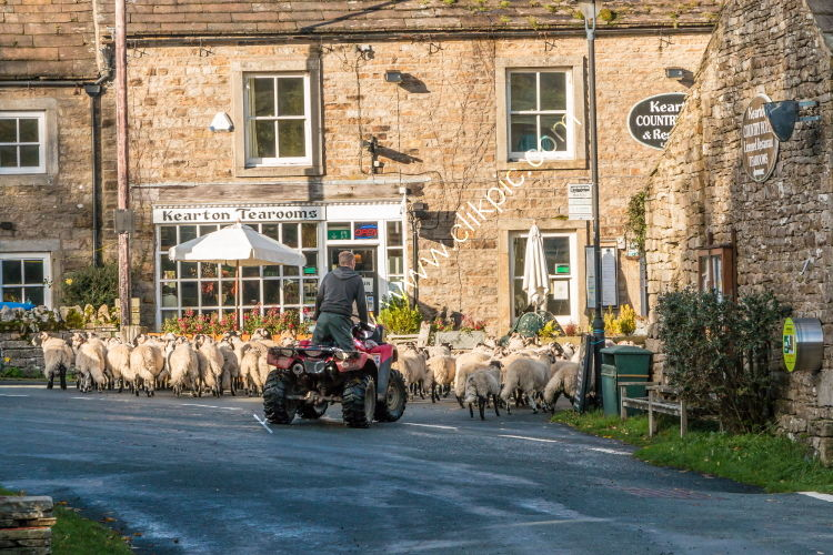 Going for afternoon tea at the Kearton, Thwaite, Swaledale