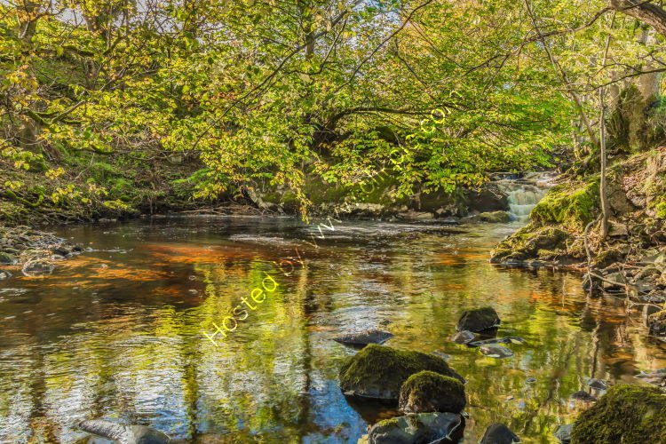 A Tranquil Pool on Thwaite Beck
