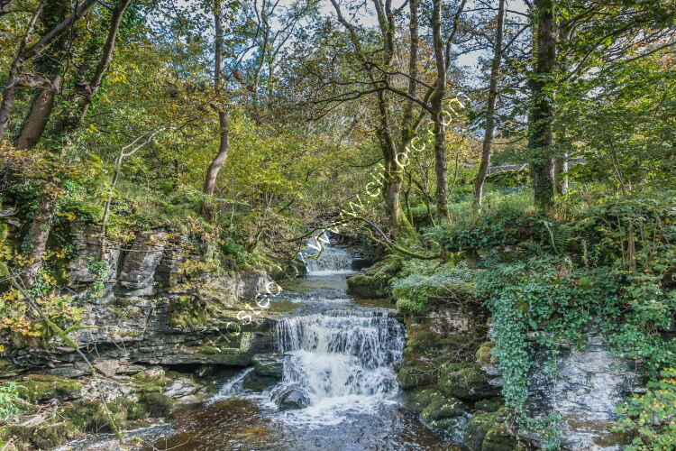 Cray Gill, Upper Wharfedale
