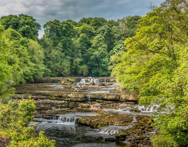 Upper Falls, Aysgarth, Wensleydale