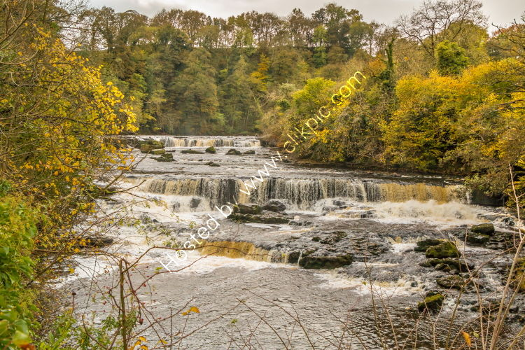 Autumn at Aysgarth Upper Falls.