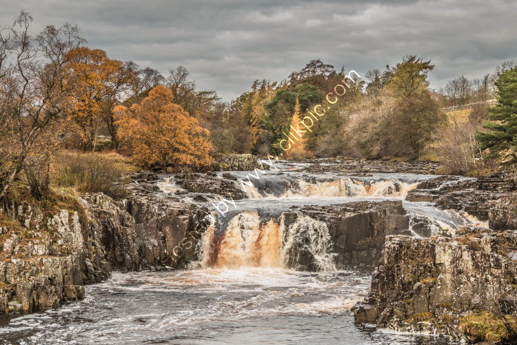 Autumn Colours at Low Force Waterfall