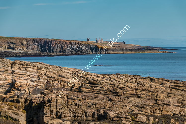 Cullernose Point and Dunstanbugh Castle