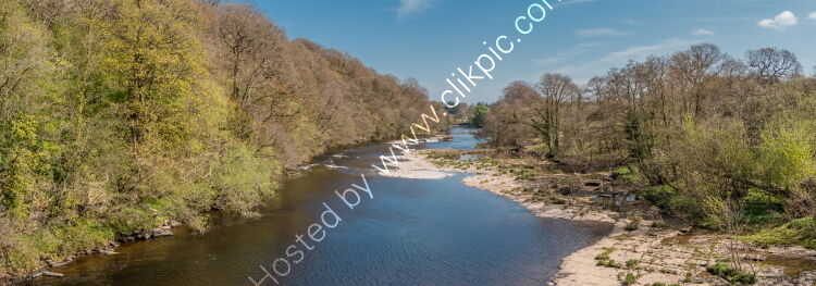 River Tees Downstream from Whorlton Bridge Panorama