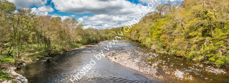 Spring Panorama on the River Tees at Whorlton