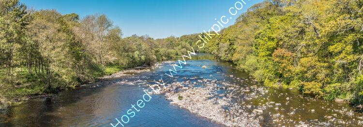 The River Tees at Whorlton Spring Panorama