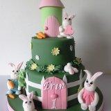 Bunny rabbits birthday