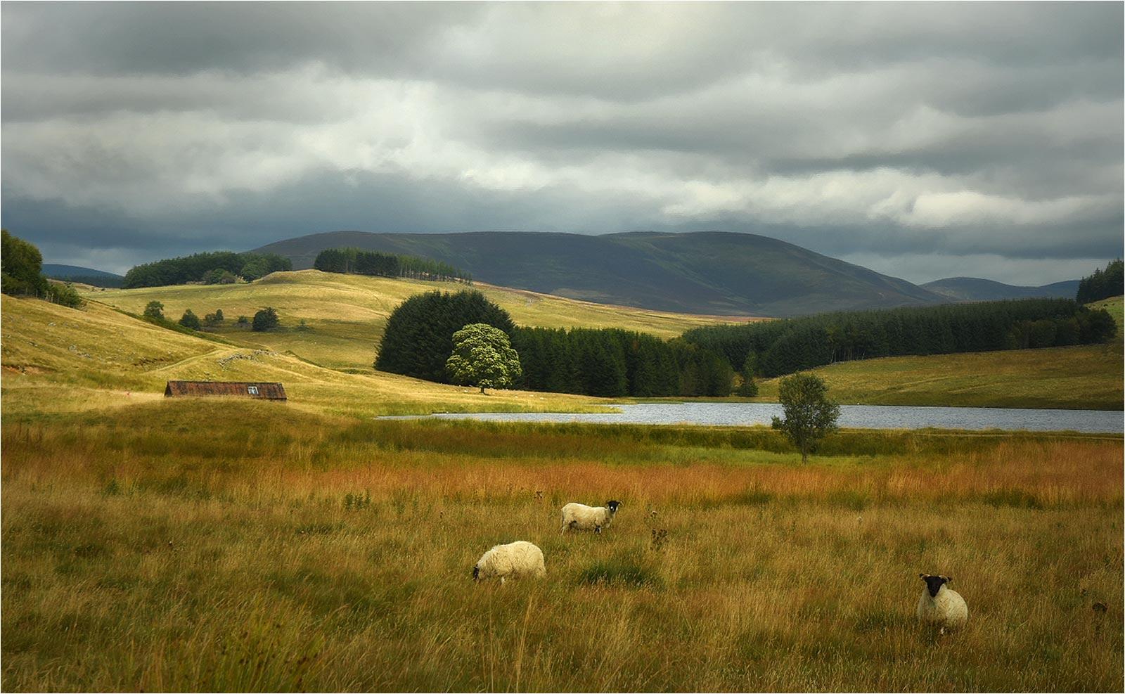 Loch Shandra