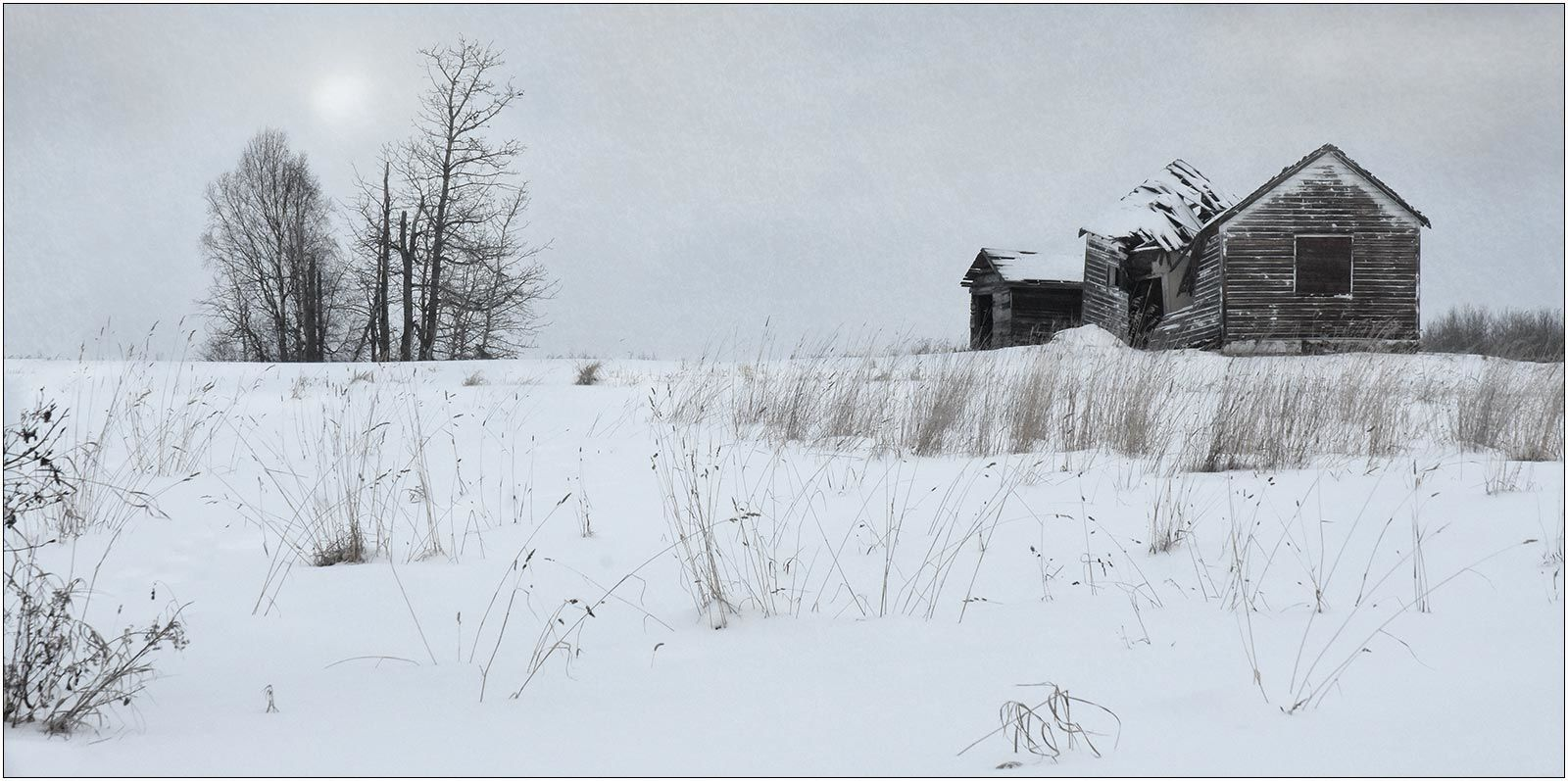 Winter, Homestead