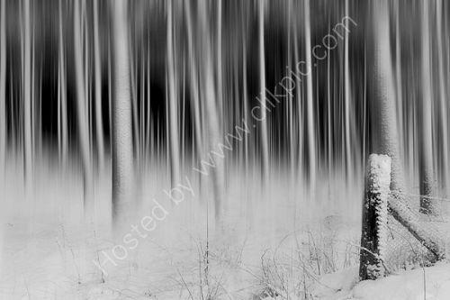 Winter, Kinnordy