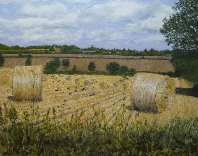 Hay Bales at Crow Hill - Greetings card