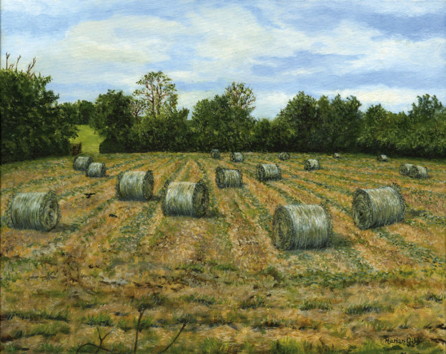 Haylage - Baling the Back Field - Greetings card