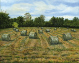 Haylage - Baling the Back Field