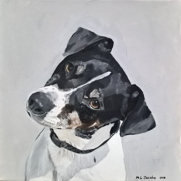 Dog Portrait (Jake)