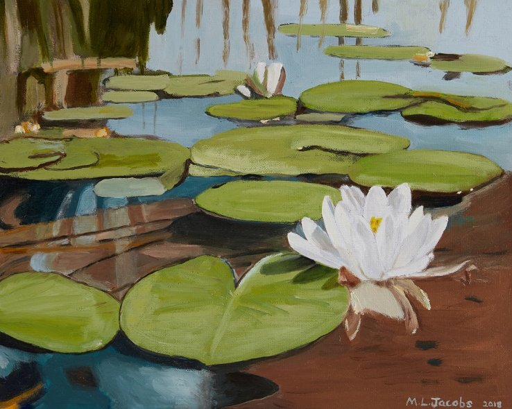 Water Lilies 60 x 75 cm