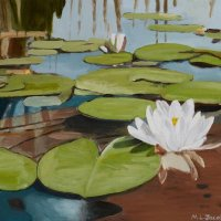 Water Lilies 40 x 50 cm