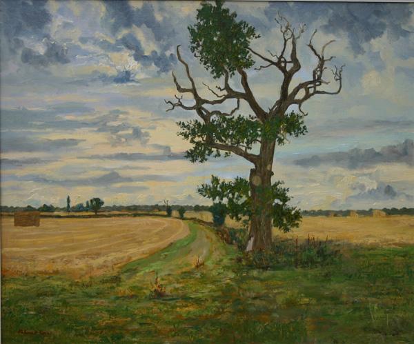 Stag Oak