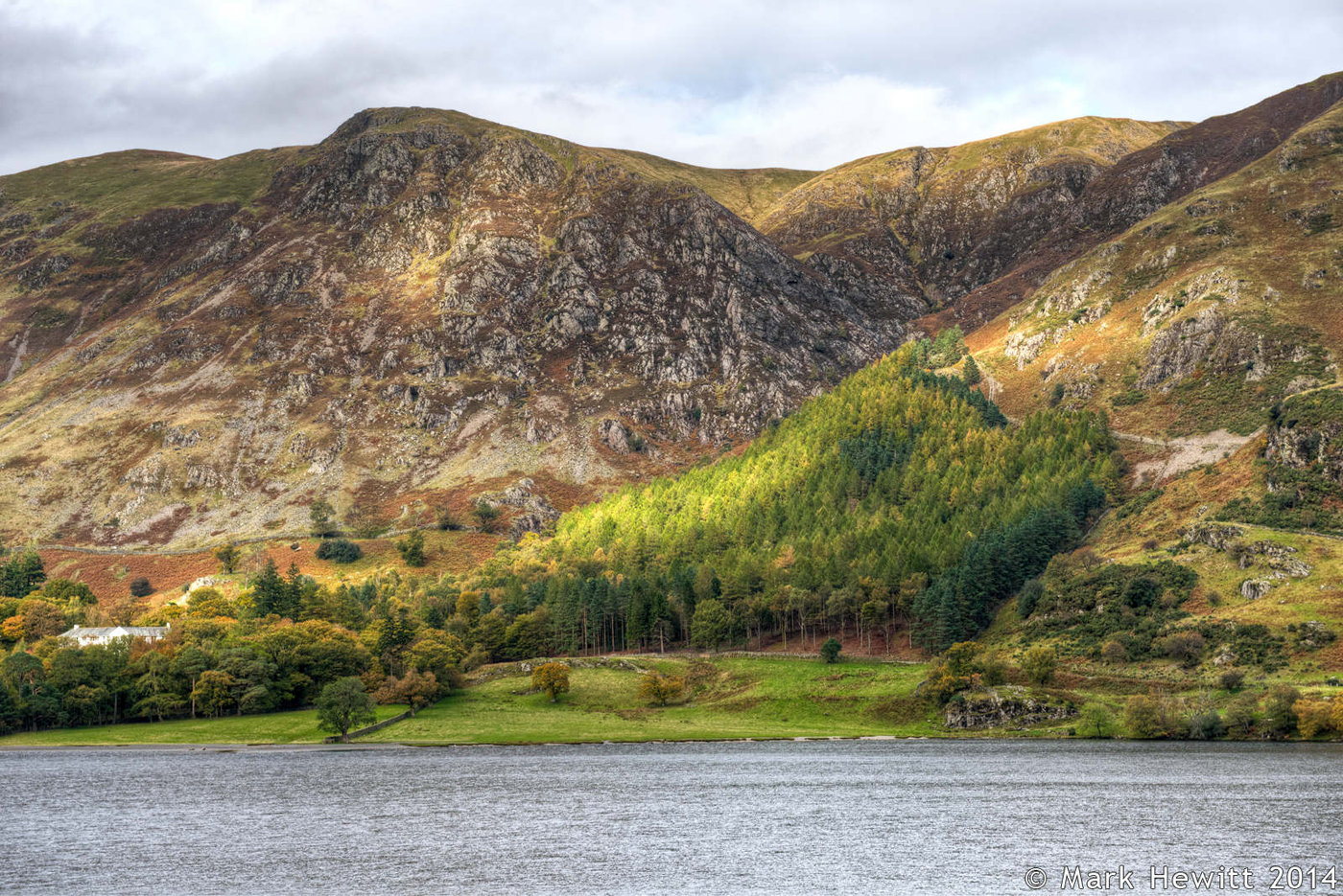 Crag Wood From Buttermere