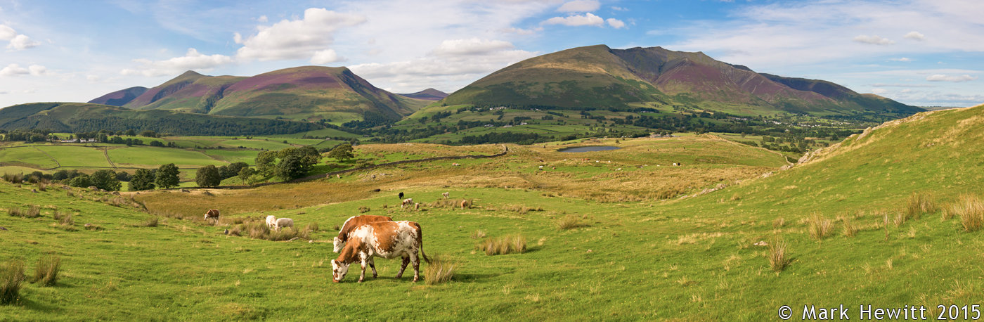 Skiddaw & Blencathra From Low Rigg