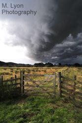 Storm Gate