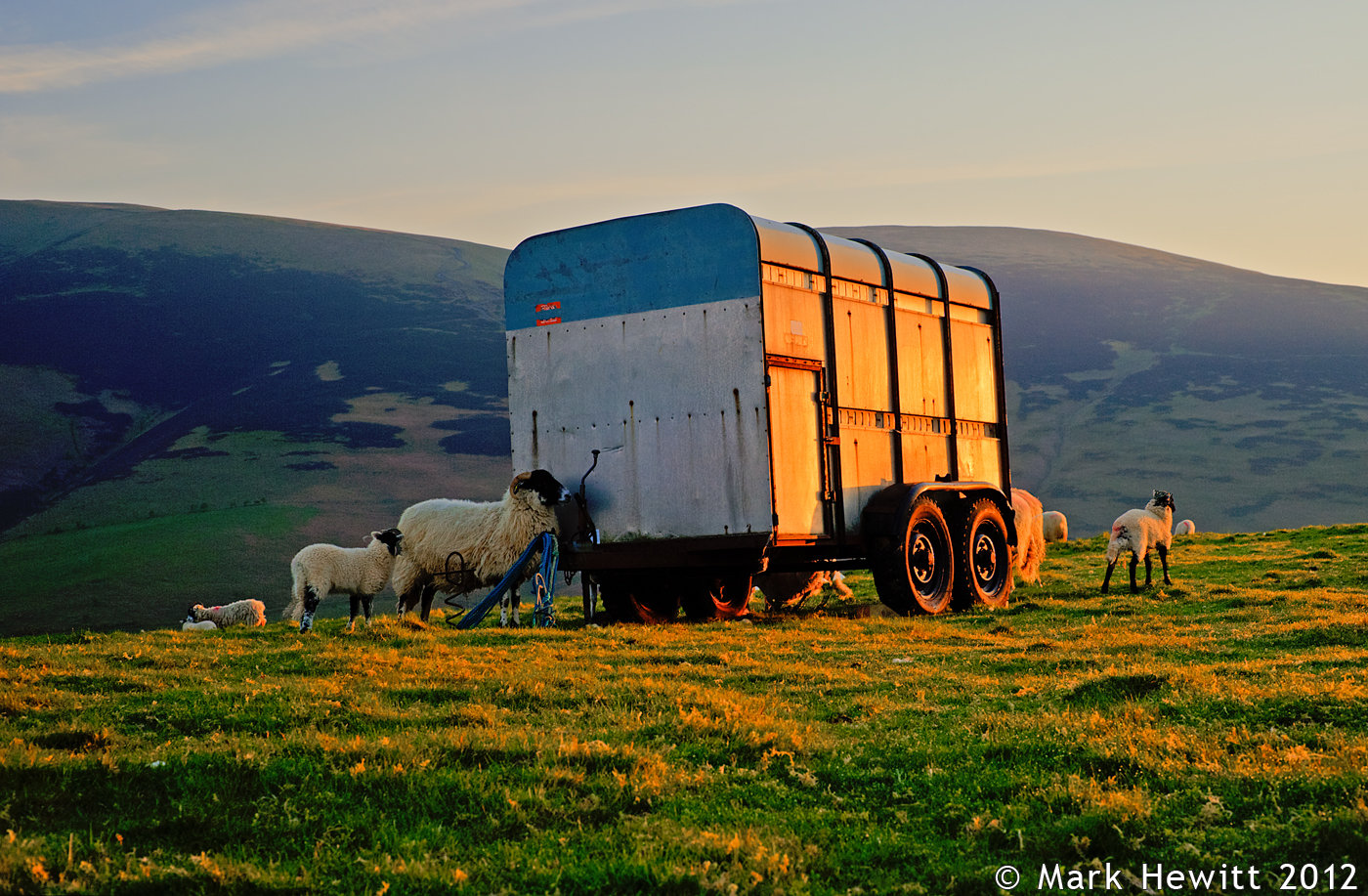 Trailer At Latrigg